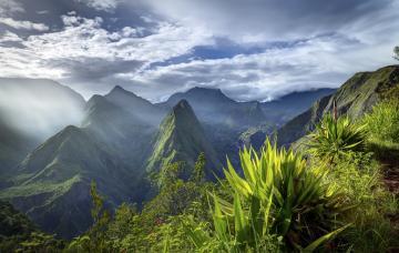 Fréquentation touristique au 1er Semestre 2016 à La Réunion