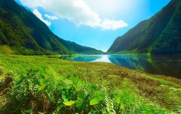 Fréquentation touristique en 2015 à La Réunion